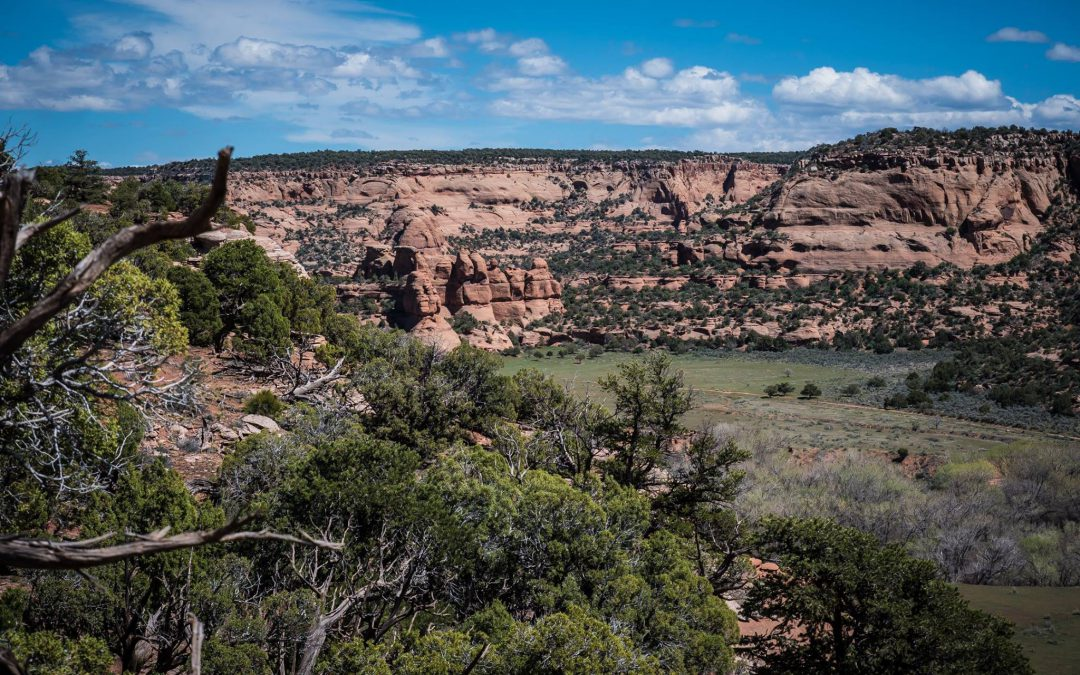 Can Grand Junction Really Land The 'Big Fish,' The Bureau of Land Management HQ?