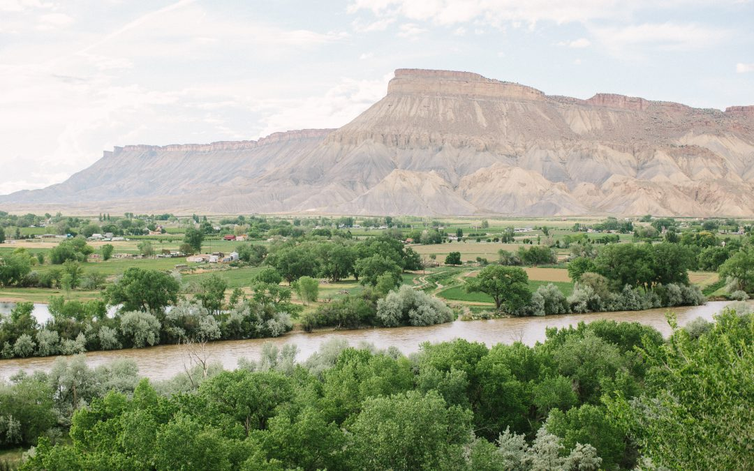 Colorado's Emerging Wine Industry Starts Here in the Grand Valley