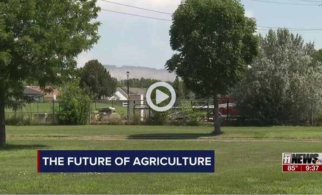https://www.nbc11news.com/2021/07/30/future-agriculture/